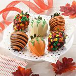 Full Half Dozen Fall Belgian Chocolate Strawberries