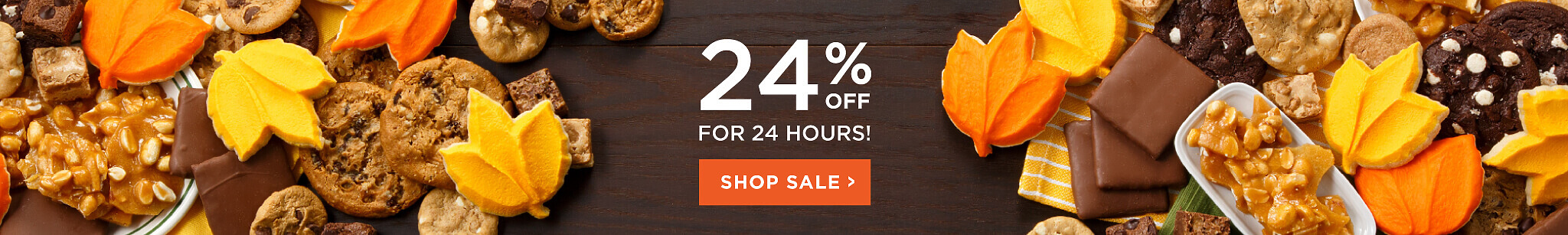 24 Hour Sale 24% Off Sitewide use code Season24
